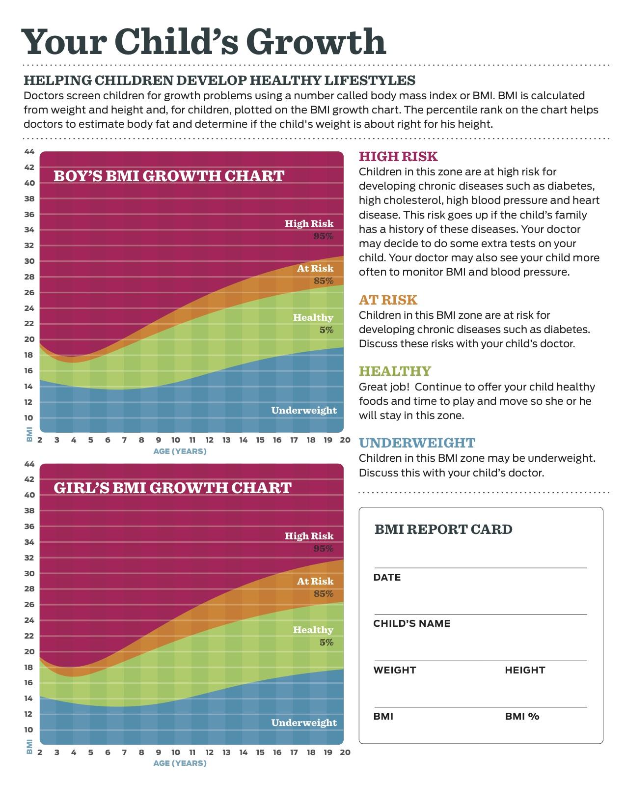 assets history fact sheet